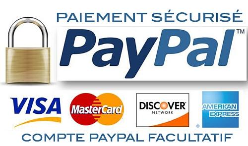 Paypal Paiement Sécurisé