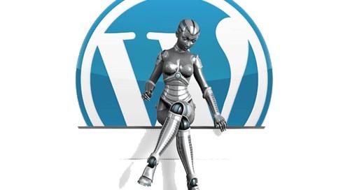 WordPress Black Hat SEO
